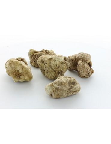White Truffles - selection 18/40g